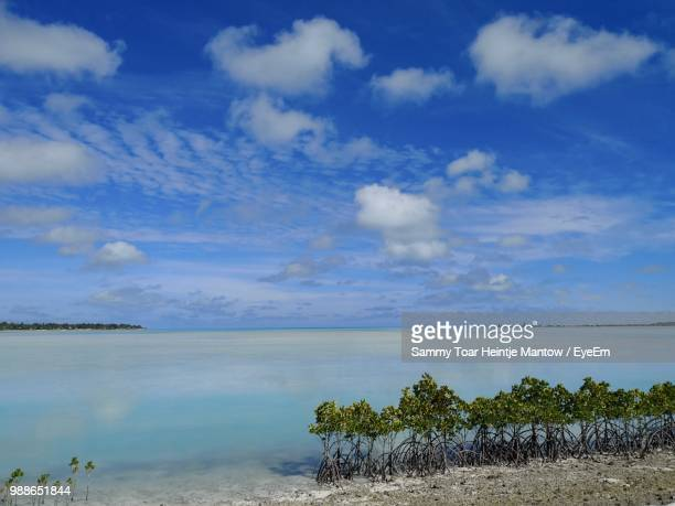 scenic view of sea against blue sky - kiribati stock-fotos und bilder
