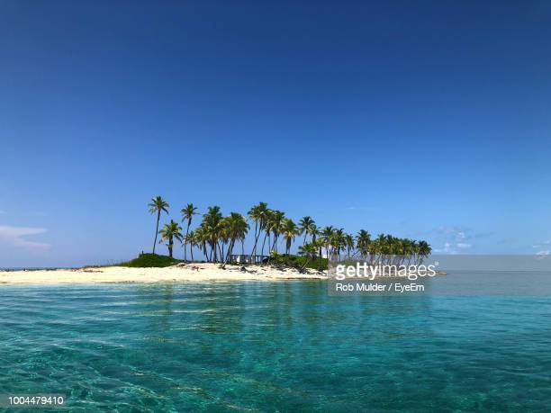 scenic view of sea against clear blue sky - ナッソー ストックフォトと画像