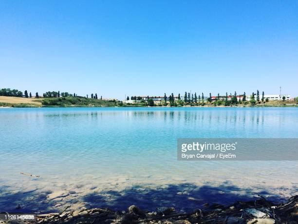 scenic view of sea against clear blue sky - carvajal stock photos and pictures