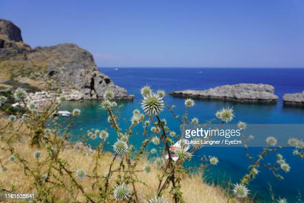scenic view of sea against clear blue sky - marina langner foto e immagini stock