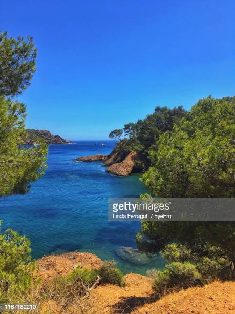 scenic view of sea against clear blue sky - la ciotat photos et images de collection