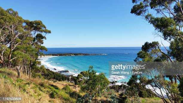 scenic view of sea against clear blue sky - wang he stock pictures, royalty-free photos & images