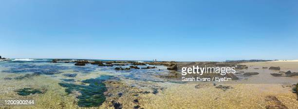 scenic view of sea against clear blue sky - sarah sands stock pictures, royalty-free photos & images