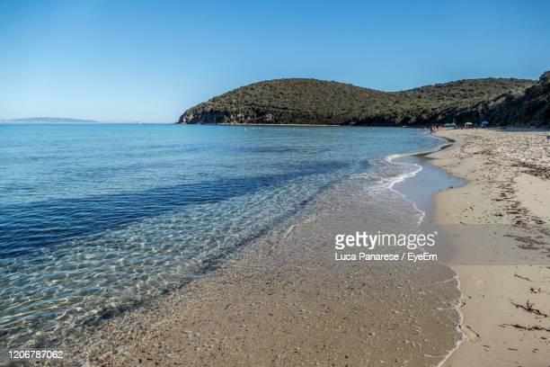 scenic view of sea against clear blue sky - pastore maremmano foto e immagini stock