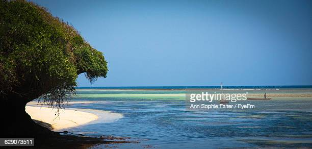 scenic view of sea against clear blue sky - mombasa stock pictures, royalty-free photos & images
