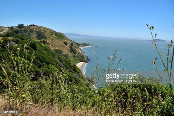 scenic view of sea against clear blue sky - angel island stock photos and pictures