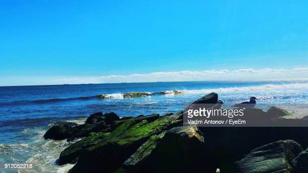 scenic view of sea against clear blue sky - antonov stock pictures, royalty-free photos & images