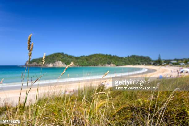 scenic view of sea against clear blue sky - whangarei heads stock pictures, royalty-free photos & images