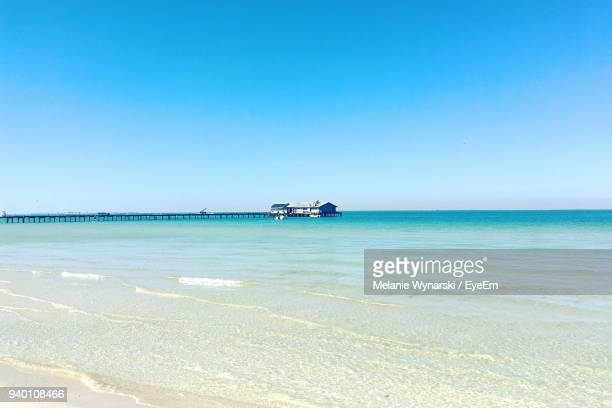 scenic view of sea against clear blue sky - anna maria island stock pictures, royalty-free photos & images