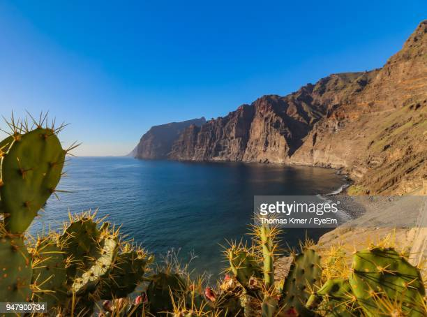scenic view of sea against clear blue sky - isla de tenerife fotografías e imágenes de stock