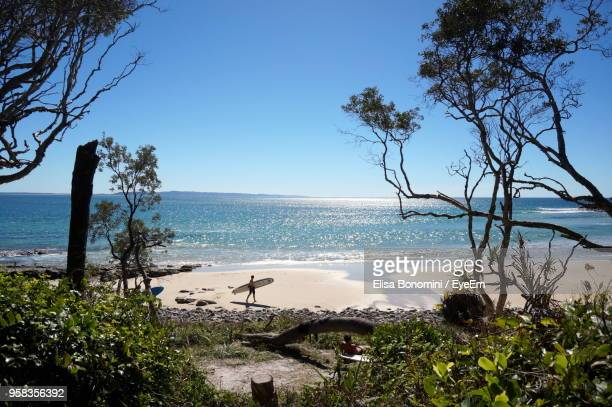 scenic view of sea against clear blue sky - sunshine coast australia stock pictures, royalty-free photos & images