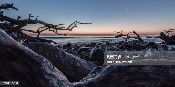 scenic view of sea against clear sky during sunset - brunswick georgia stock pictures, royalty-free photos & images