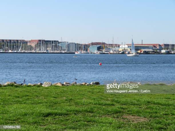scenic view of sea against clear sky - aalborg stock pictures, royalty-free photos & images
