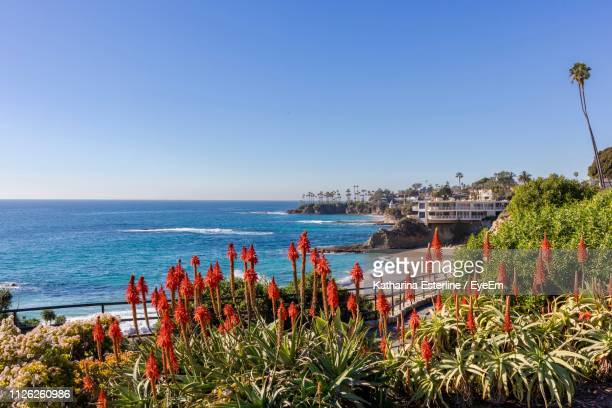 scenic view of sea against clear sky - laguna beach california stock pictures, royalty-free photos & images