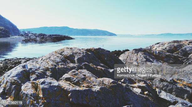 scenic view of sea against clear sky - トロンハイム ストックフォトと画像