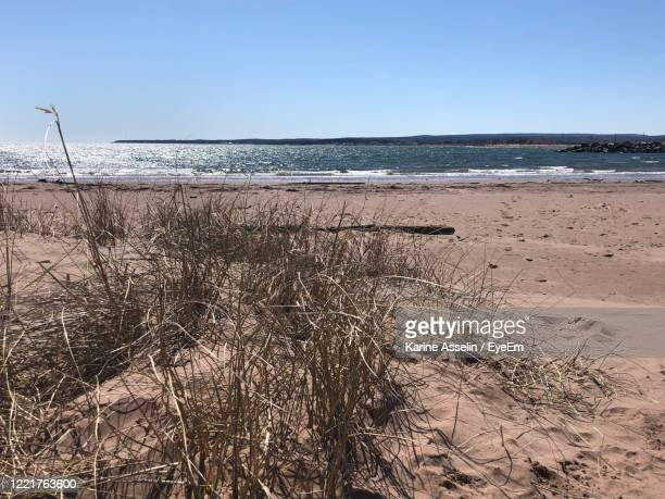 scenic view of sea against clear sky - karine asselin stock pictures, royalty-free photos & images