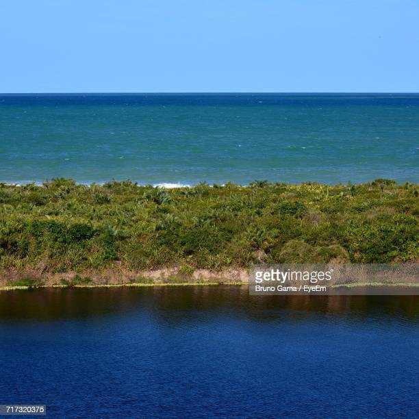 scenic view of sea against clear sky - maca plant stock photos and pictures