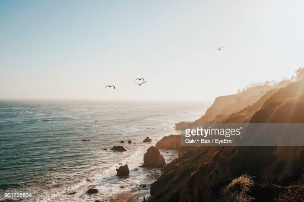 scenic view of sea against clear sky - malibu stock pictures, royalty-free photos & images