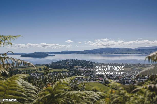 scenic view of sea against clear sky - rotorua stock pictures, royalty-free photos & images
