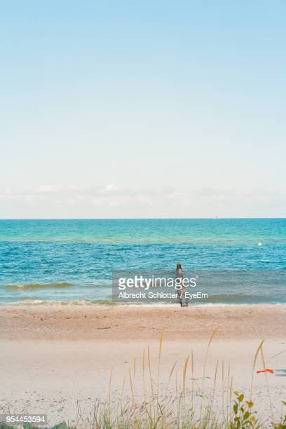 scenic view of sea against clear sky - albrecht schlotter foto e immagini stock