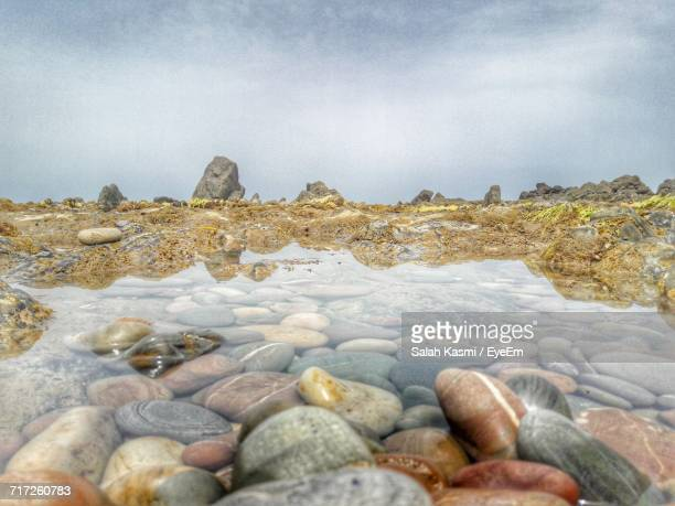 scenic view of sea against cloudy sky - salah stock photos and pictures