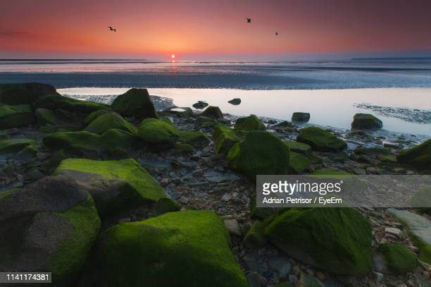 scenic view of sea against sky at sunset - brest brittany stock pictures, royalty-free photos & images
