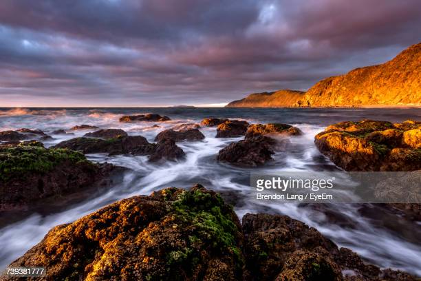 scenic view of sea against sky at sunset - wellington new zealand stock photos and pictures
