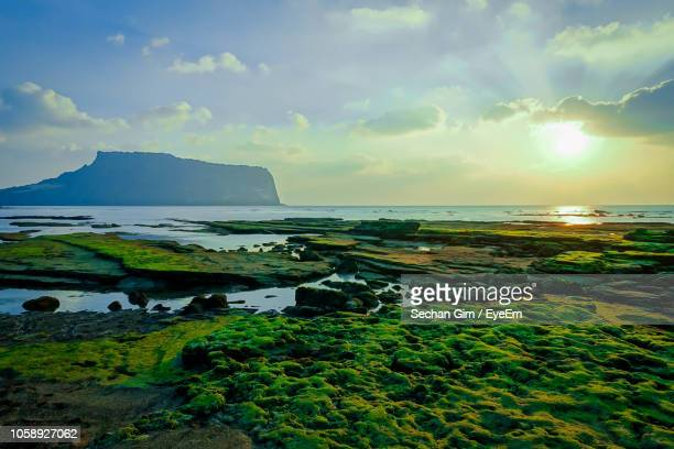 scenic view of sea against sky during sunset - jeju - fotografias e filmes do acervo