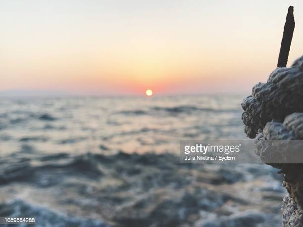 scenic view of sea against sky during sunset - nikitina stock pictures, royalty-free photos & images