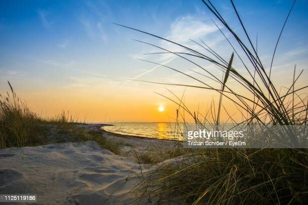 scenic view of sea against sky during sunset - schleswig holstein stock photos and pictures