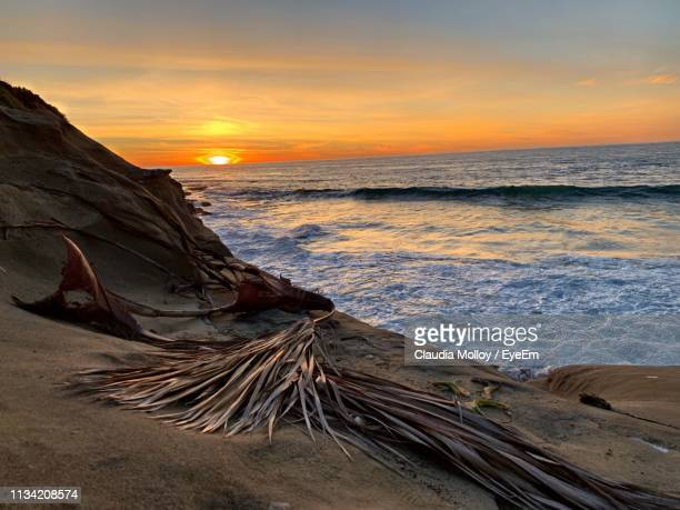scenic view of sea against sky during sunset - sandy molloy stock photos and pictures