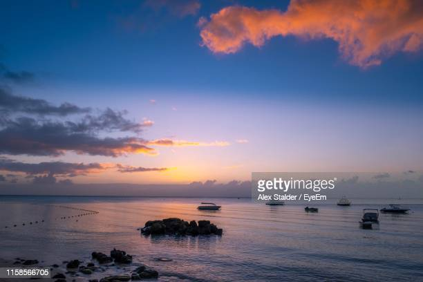 scenic view of sea against sky during sunset - named animal ストックフォトと画像