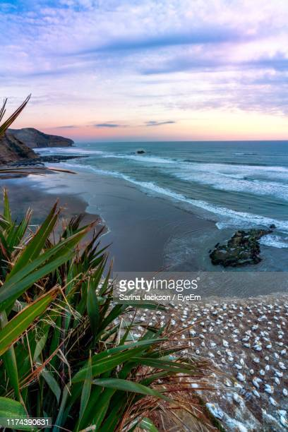 scenic view of sea against sky during sunset - punalu'u_beach stock pictures, royalty-free photos & images