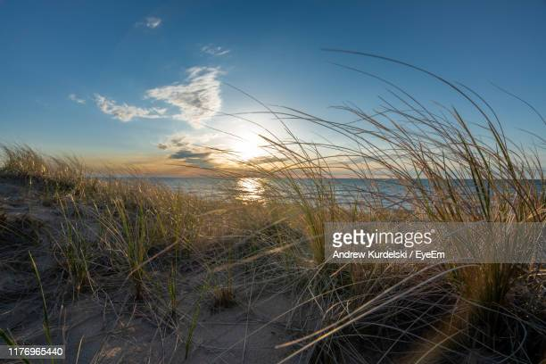 scenic view of sea against sky during sunset - lake michigan stock pictures, royalty-free photos & images