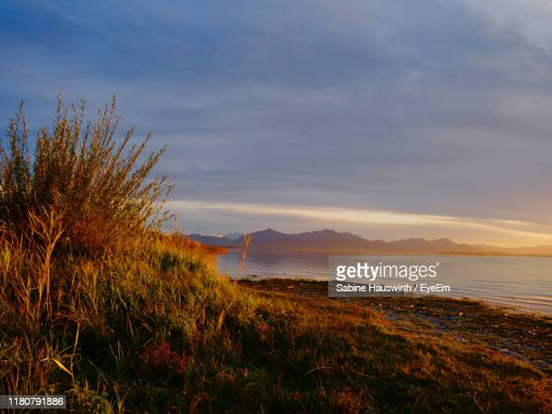 scenic view of sea against sky during sunset - sabine hauswirth stock pictures, royalty-free photos & images