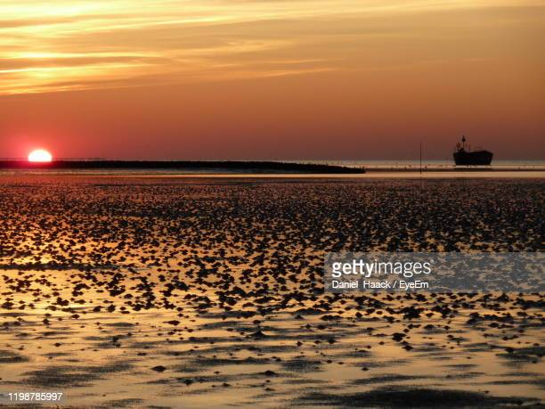 scenic view of sea against sky during sunset - haack stock pictures, royalty-free photos & images