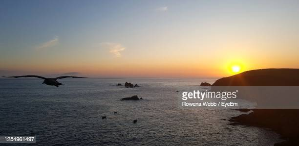 scenic view of sea against sky during sunset - horizon stock pictures, royalty-free photos & images