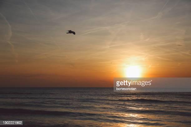 scenic view of sea against sky during sunset - bortes stock-fotos und bilder