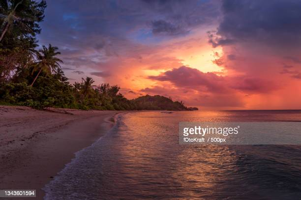 scenic view of sea against sky during sunset - baum stock pictures, royalty-free photos & images