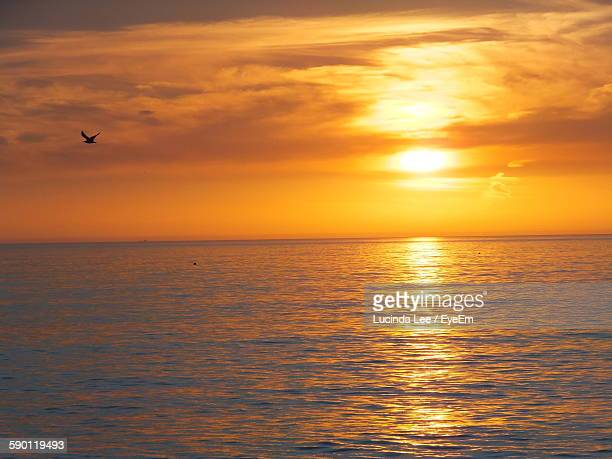 scenic view of sea against sky during sunset - lucinda lee stock photos and pictures