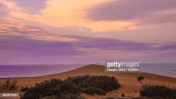 scenic view of sea against sky during sunset - oran algeria photos et images de collection