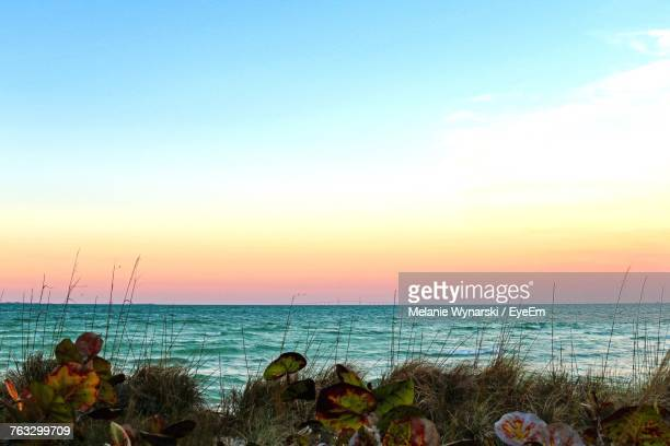 scenic view of sea against sky during sunset - anna maria island stock pictures, royalty-free photos & images