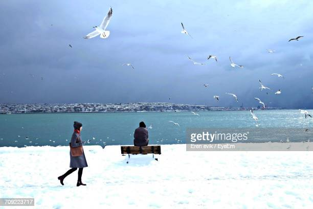 Scenic View Of Sea Against Sky During Winter