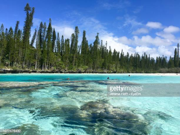 scenic view of sea against sky - new caledonia stock photos and pictures