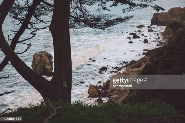 scenic view of sea against sky - bortes foto e immagini stock