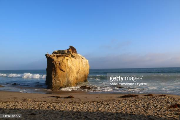 scenic view of sea against sky - malibu beach stock pictures, royalty-free photos & images