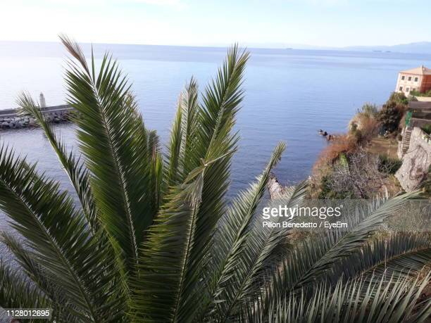 scenic view of sea against sky - benedetto photos et images de collection