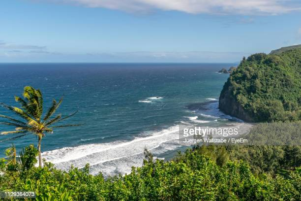 scenic view of sea against sky - waimea valley stock photos and pictures