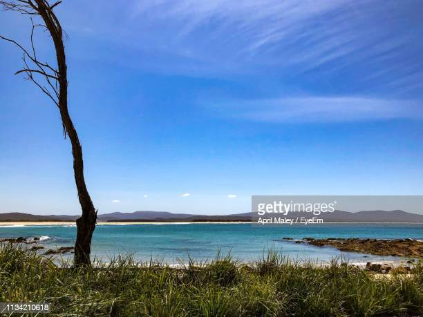 scenic view of sea against sky - mallacoota stock pictures, royalty-free photos & images