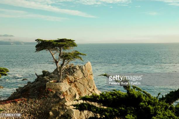 scenic view of sea against sky - pebble beach california stock pictures, royalty-free photos & images